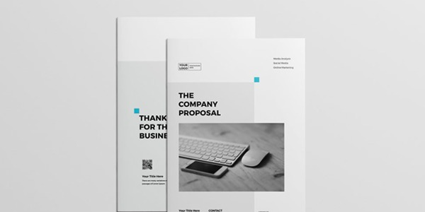 professional-proposal-template