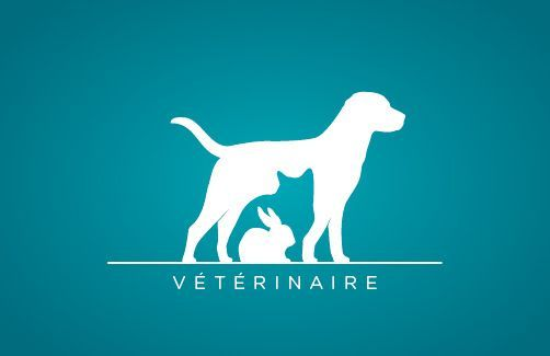 photo logo gratuit veterinaire