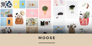 Moose : Un pack de photos libres de droits, + 5900 photos à télécharger en une fois