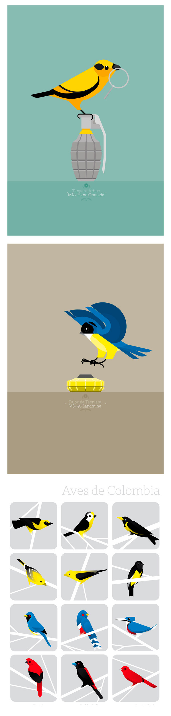 Camilo Carmona illustrations minimaliste birds