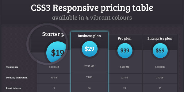 css3-responsive-pricing-table