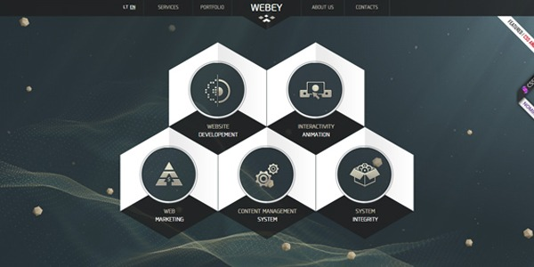 website-designs-using-hexagons
