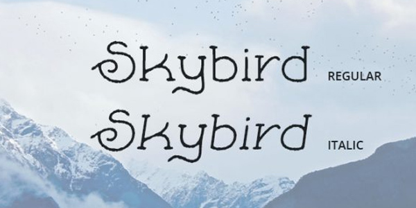 skybird-rough-crazy-free-font