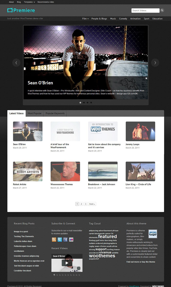 Premiere Wordpress theme