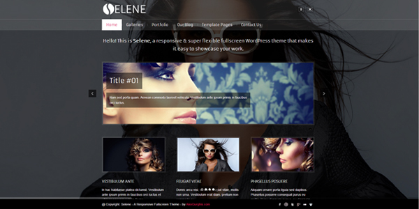 selene-fullscreen-premium-wordpress-theme
